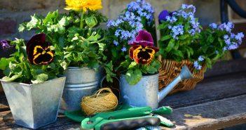 10 Gartenwerkzeuge für den perfekten Start in den Frühling